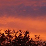 Sonnenuntergang über Oberhausen. © Marc Szeglat